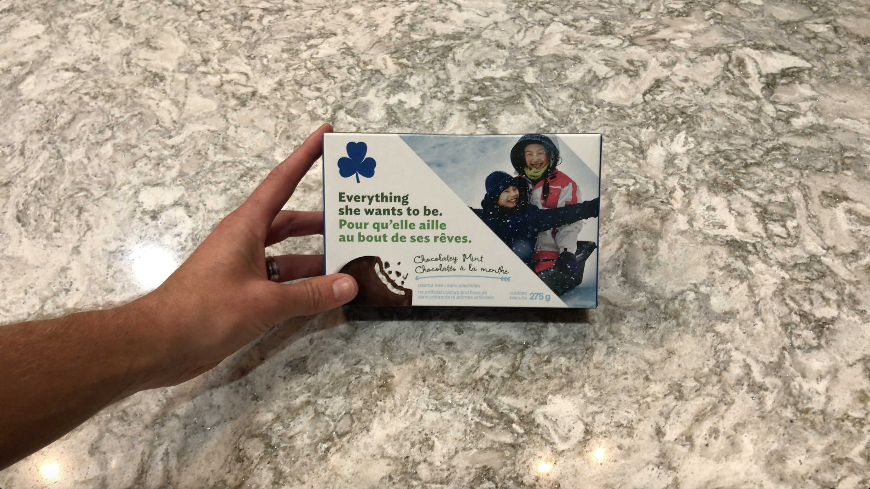 GirlGuideCookies-Extension2-act1-how many cookies