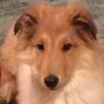 Profile photo of beth-hayden